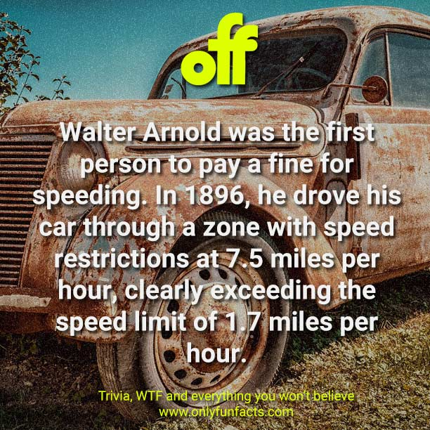 The 51 Craziest Records You Won T Find Anywhere Else Only Fun Facts
