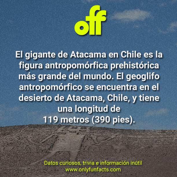 15 datos curiosos sobre Chile en el 2020 - Only Fun Facts